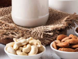 Soy and Nut milk Producer